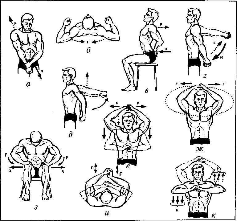 Упражнения для плечевого сустава: лечебная гимнастика