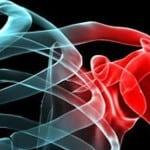 Травмы плеча и плечевого сустава