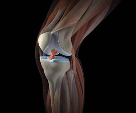 Может ли болеть спина при первых месячных