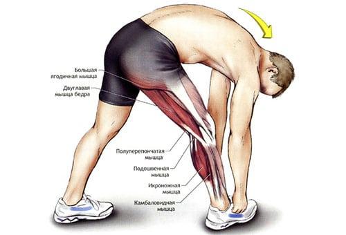 Боль в ноге от колена до бедра причины в левой и правой ноге