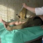 остеоартроз грязелечение