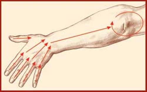 внекишечные паразиты лечение