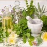 лечение артроза травами