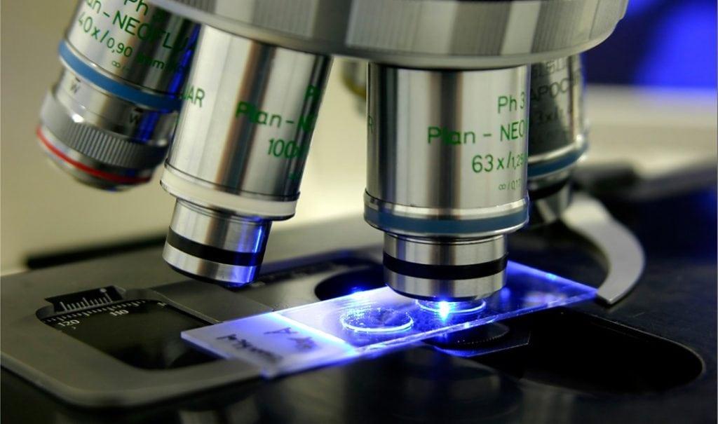 этот вид светопольная микроскопия факторы определяющие увеличение микроскопа чистой синтетики есть