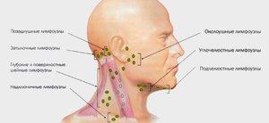 При нажатии болит шея под челюстью