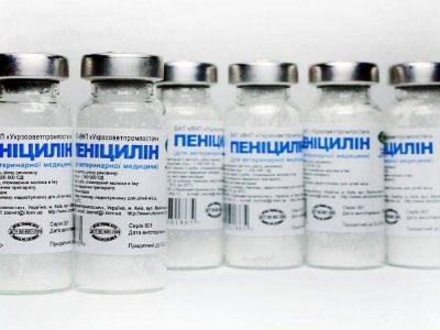 Инфекционный неспецифический полиартрит - причины, симптомы, лечение медикаментами и народными средствами