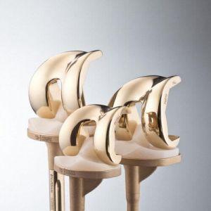 Эндопротез коленного сустава фирмы Aesculap Эскулап особенности протезирования